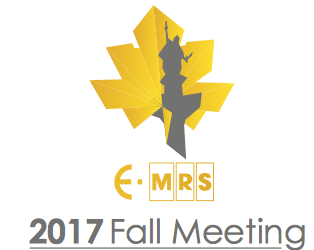 Meet us in E-MRS Fall meeting in Warsaw
